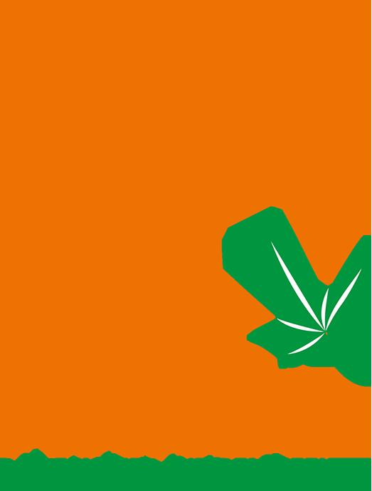 Mandl-Fenster